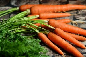 A bundle of carrots harvested