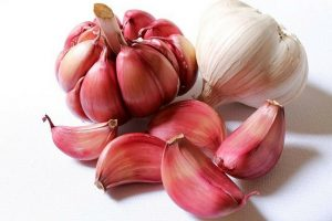 Garlic bulb and garlic cloves red and white