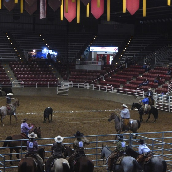 ranch-rodeo-6