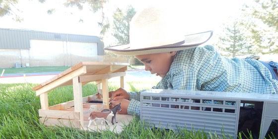 Hard to Find Sturdy Farm Toys for Farm Kids