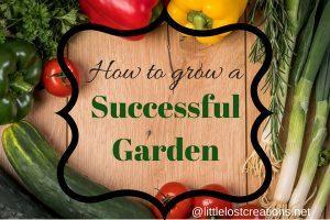 How to grow a successful garden