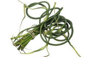 Garlic scapes tied in a bundle