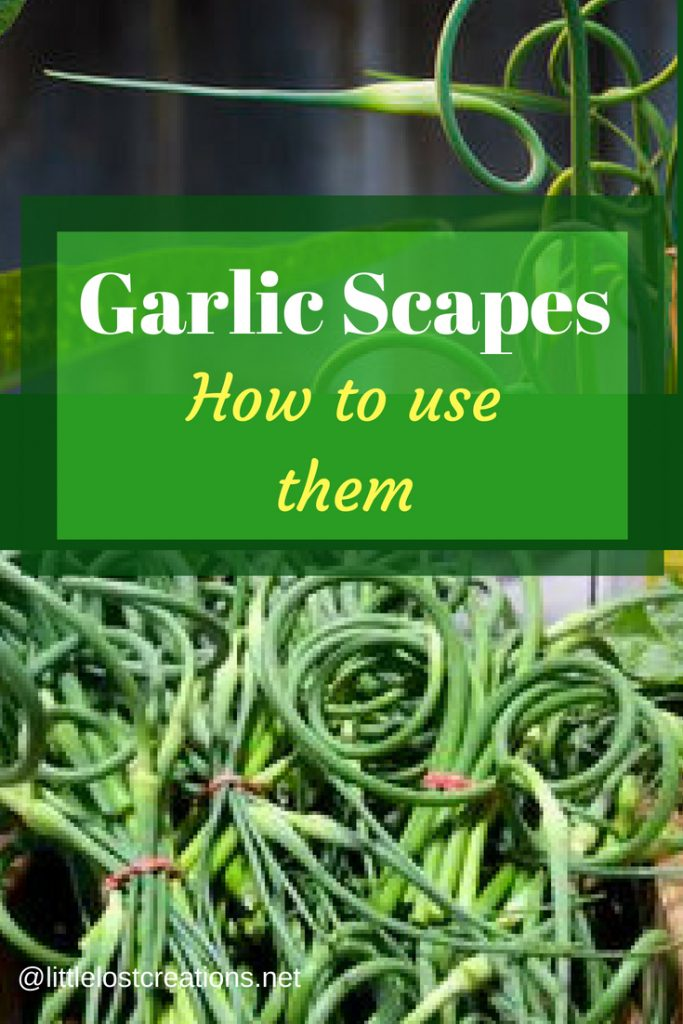 Garlic scapes how to use them Garlic scape pile in a crate