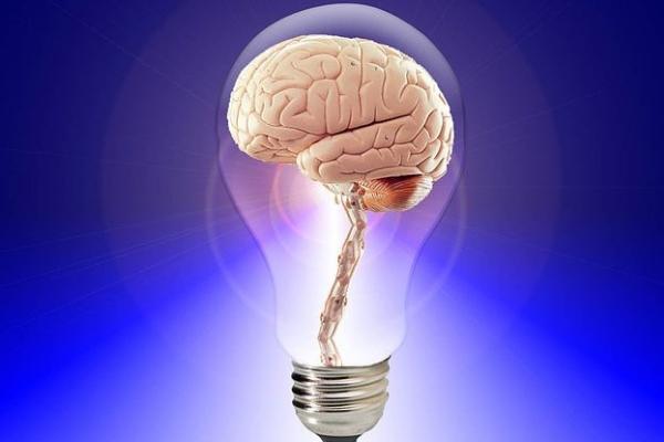 light bulb with a brain inside, littlelostcreations.net