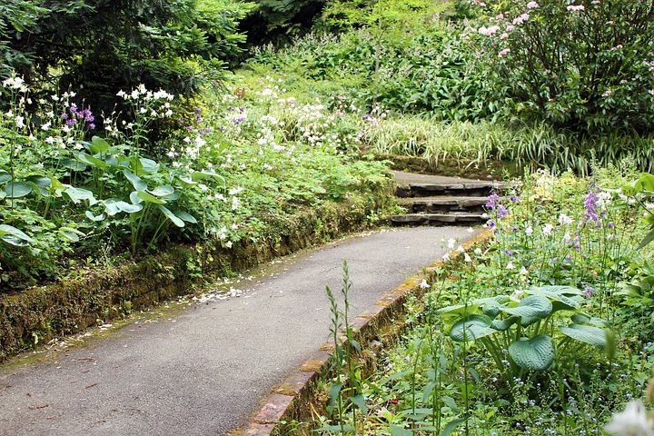 A path leading through a garden and up some steps.